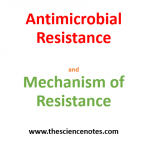 Antimicrobial Resistance and its Mechanism