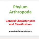 Phylum Arthropoda : General Characteristics and Classification